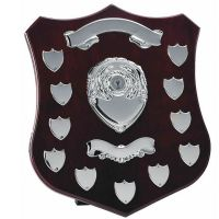 Champion14 Silver Annual Shield-W305C